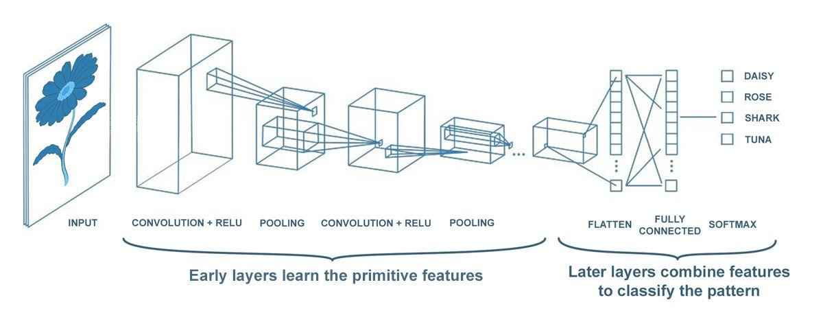 dl-engineers-ebook-ch4-model-training-daisy