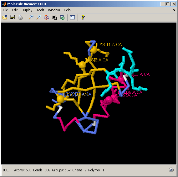Visualizing the Three-Dimensional Structure of a Molecule