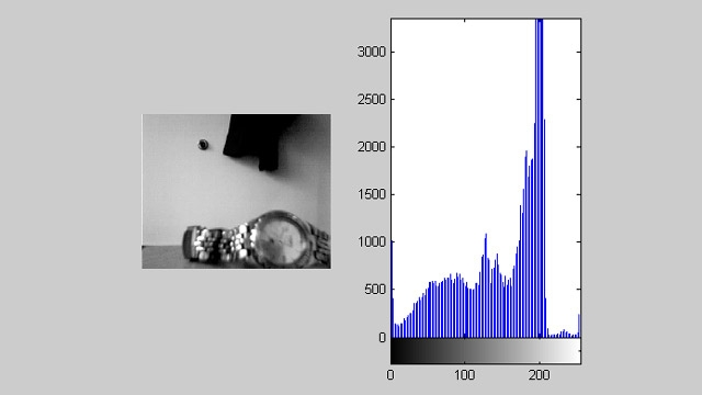 Acquisition Toolbox 与 Image Processing Toolbox 结合使用,可以通过实时直方图显示视频源。