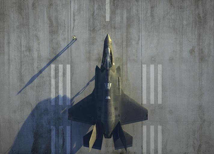 飞行控制和发动机控制