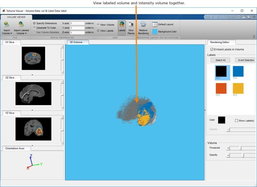 通过 Volume Viewer 应用程序,您可以查看三维体数据或已标注的三维体数据并与之交互。