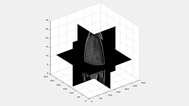 以二维切片的形式查看三维体。